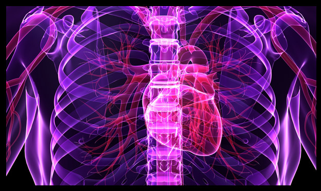 Purple x-ray with pink heart